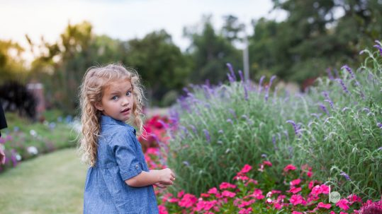Beth Dean Photography - Fall Child Photos